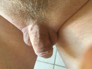 Just a shot of the penis and the landing strip