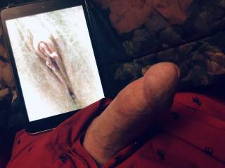 I've had two orgasms today and wasn't sure my cock would get hard again, but when I saw Brooklove444's pussy my cock began to swell, I'm going to masturbate now and going to make a video for her. I would love to suck her clit till she cums in my m