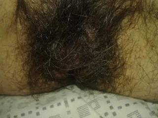 Love my hairy pussy