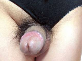 Black cotton panties and penis head.