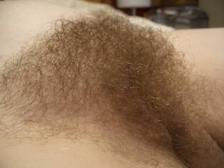 pregnant wife's full hairy pussy. just love burying my face in her mound and breathing in her sweet scent