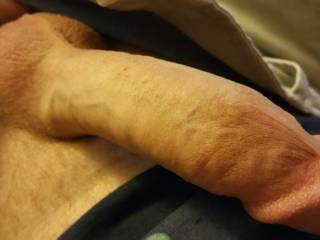 Just a good picture of my cock after getting turned on by something....