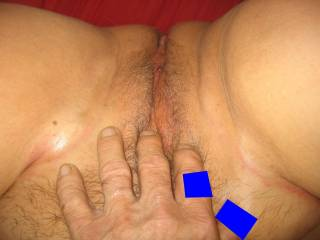 fingering wifes pussy