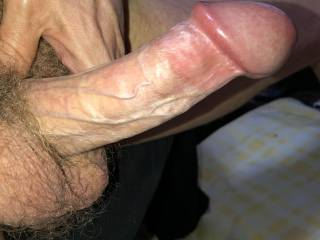 Feeling particularly hard today, are there any women out there looking for a pussy pounding?
