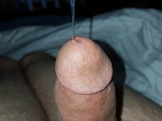 A lil pre cum anyone want to taste