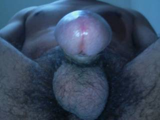 View From Below Of My Dick, Body & Balls!