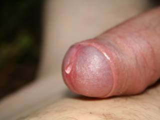 Just a little precum :)